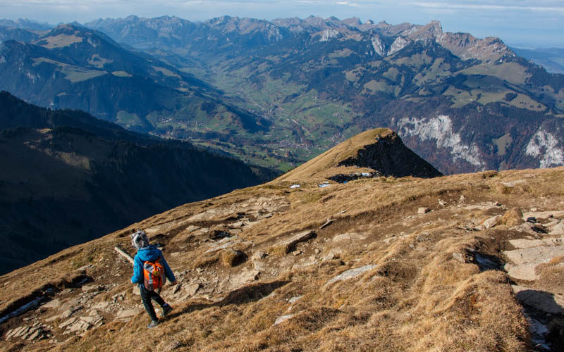 Our life in : Hiking on Mt Rigi: Urmiberg to Rigi-Kaltbad