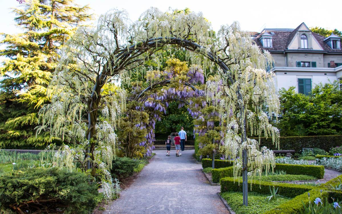 Luzern ingyenes flört társkereső